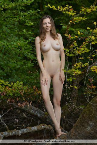 Фотограф попросил девушку с крупными сиськами раздеться в лесу на поваленном дереве
